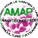 AMAP TGP
